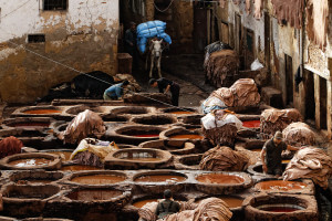 Fes-tannery
